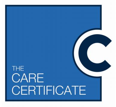 Care Certificate Award